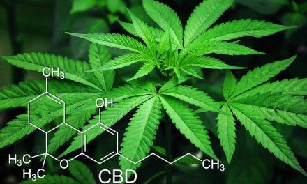 Comment essayer la weed ?
